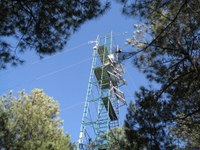 Environmental Monitor Highlights Flux Towers and Climate Change Research