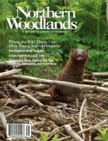 Landscape Pattern Research Featured in Northern Woodlands Magazine