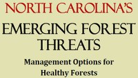 New Brochure Aids Forest Management in North Carolina