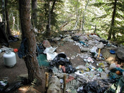 Garbage covers the forest floor at an illegal marijuana grow site