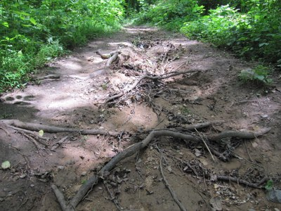 Damaged trails