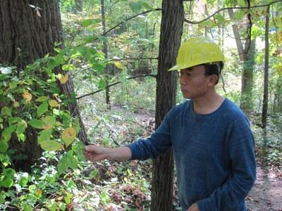Invasive Plant Research