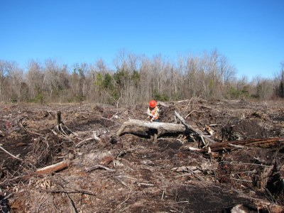 Measuring Woody Residue