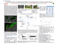 A Framework for Analyzing the Effect of Management on Forest Carbon Fluxes