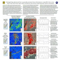 Distinguishing Ephemeral from Seasonally Persistent Forest Disturbances Using NDVI Time Series