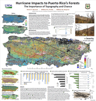 Hurricane Impacts to Puerto Rico's Forests: The Importance of Topography and Chance