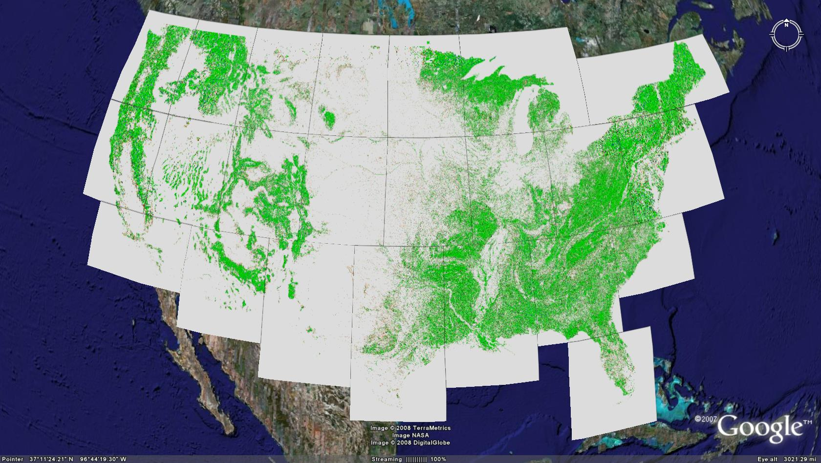 Forest Spatial Patterns In Google Earth